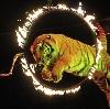 Цирки в Славянске-на-Кубани